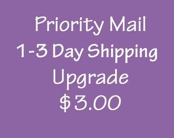 Single Onesie Priority Mail 1-3 Day Upgrade