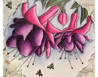 Fuchsias  - image no 7