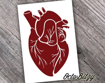 Anatomical Heart, Love Decal Sticker