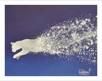 Comet cat