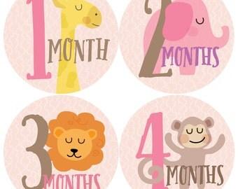 GIFT OFFER, Monthly Baby Sticker Girl, Baby Month Sticker, Zoo, Animals, Milestone Sticker, Month by Month Baby Sticker, Baby Gift Girl
