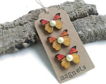 Set of 3 butterfly magnets