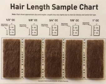 Clip Comb Sample Chart for Grooming
