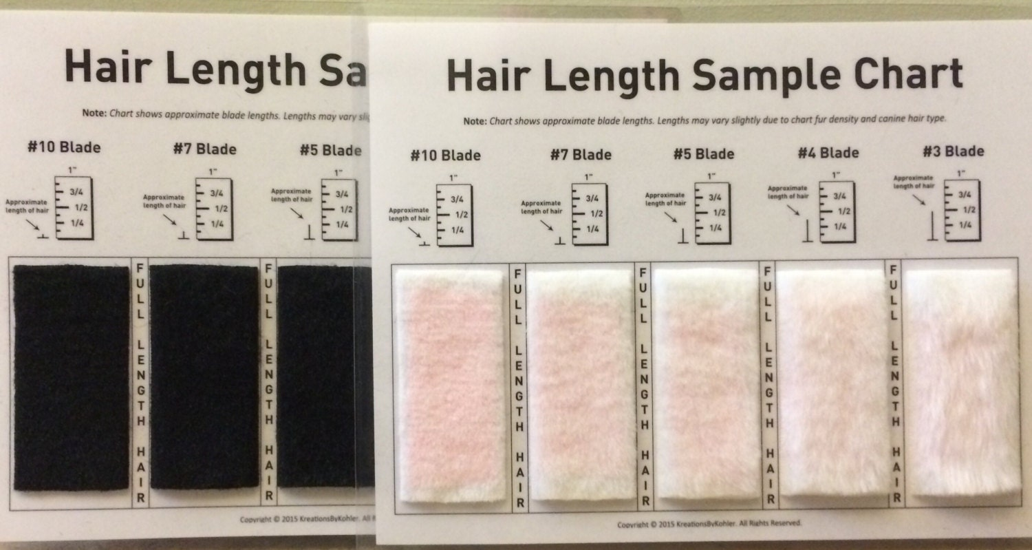 Shave Blade Sample Chart For Grooming