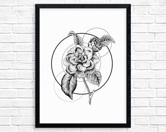 Geometry of a Flower No.3 - Camellia printable art