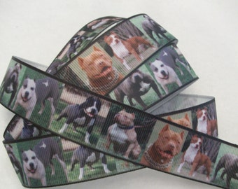 "Dog Grosgrain Ribbon 1"" Pitbull Breed"