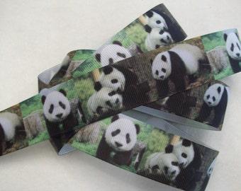 """Panda Grosgrain Ribbon 1"""" Wide"""