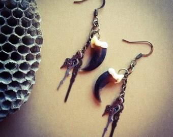 Coyote Claw Earrings, Bronze Jewelry, Bone Jewelry, Taxidermy Jewelry, Vulture Culture, Claw Jewelry, Steampunk jewelry