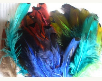 lot of 10 feathers for various confections H101