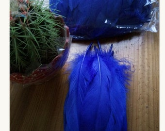 1 feather for various confections * feathers F 101
