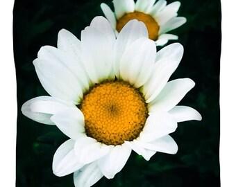 Designer duvet cover,daisies,dark,white,black,flower petal,decorative duvet,bedding,home decor,daisy,boho,duvet cover,comforter cover,flower