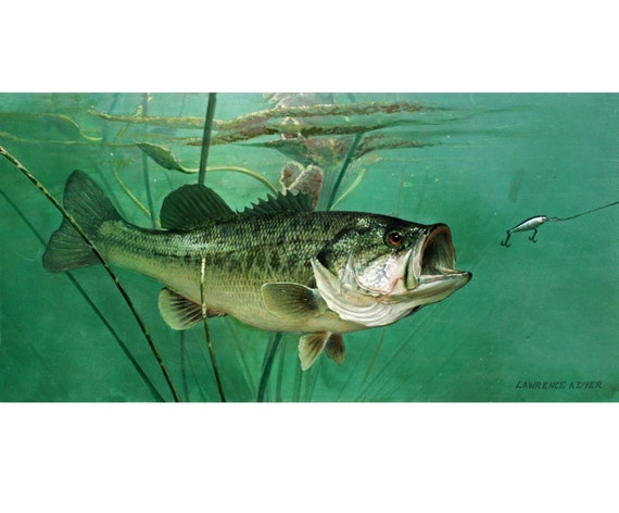 Largemouth bass original acrylic painting by lawrence dyer for Bass fish painting