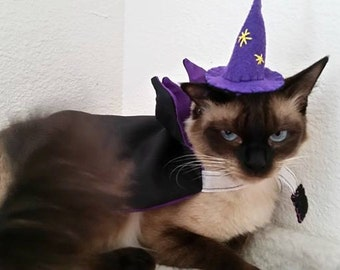 Witch/wizard Halloween costume for cats/dogs