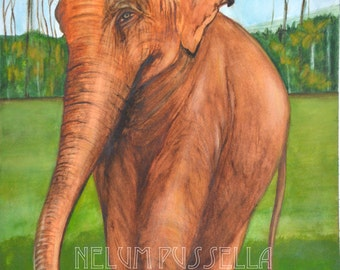 Elephant- Giclee print of Watercolor painting