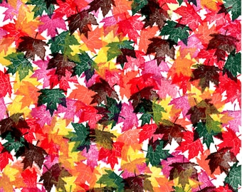 Autumn Maple Leaves on White Cardstock Paper