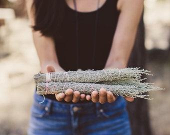 Oregon Desert Sage Smudge Sticks, Large