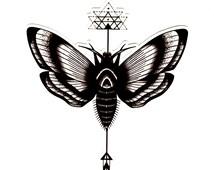 Moth Temporary Tattoo