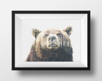 Nature Grizzly Bear Home Decor Wall Art