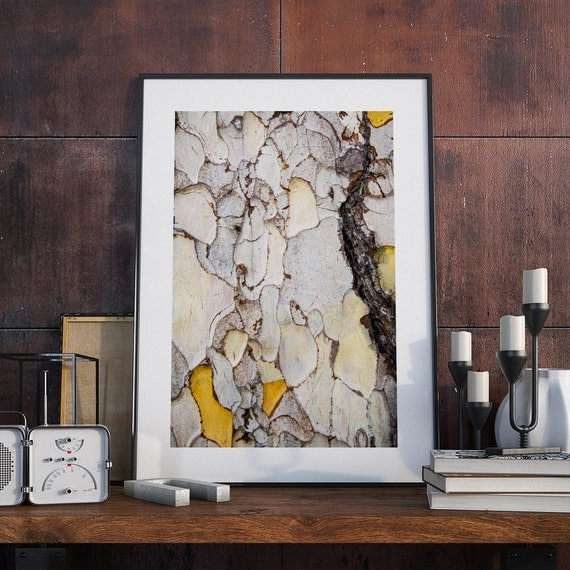 Tree bark texture photo print 7 printable photography by for Tree trunk wall art