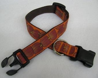 Fall Autumn Pumpkin Dog Collar - MULTIPLE SIZES AVAILABLE