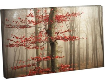 FO2426 Print On Canvas Red tree in misty forest Landscape Art
