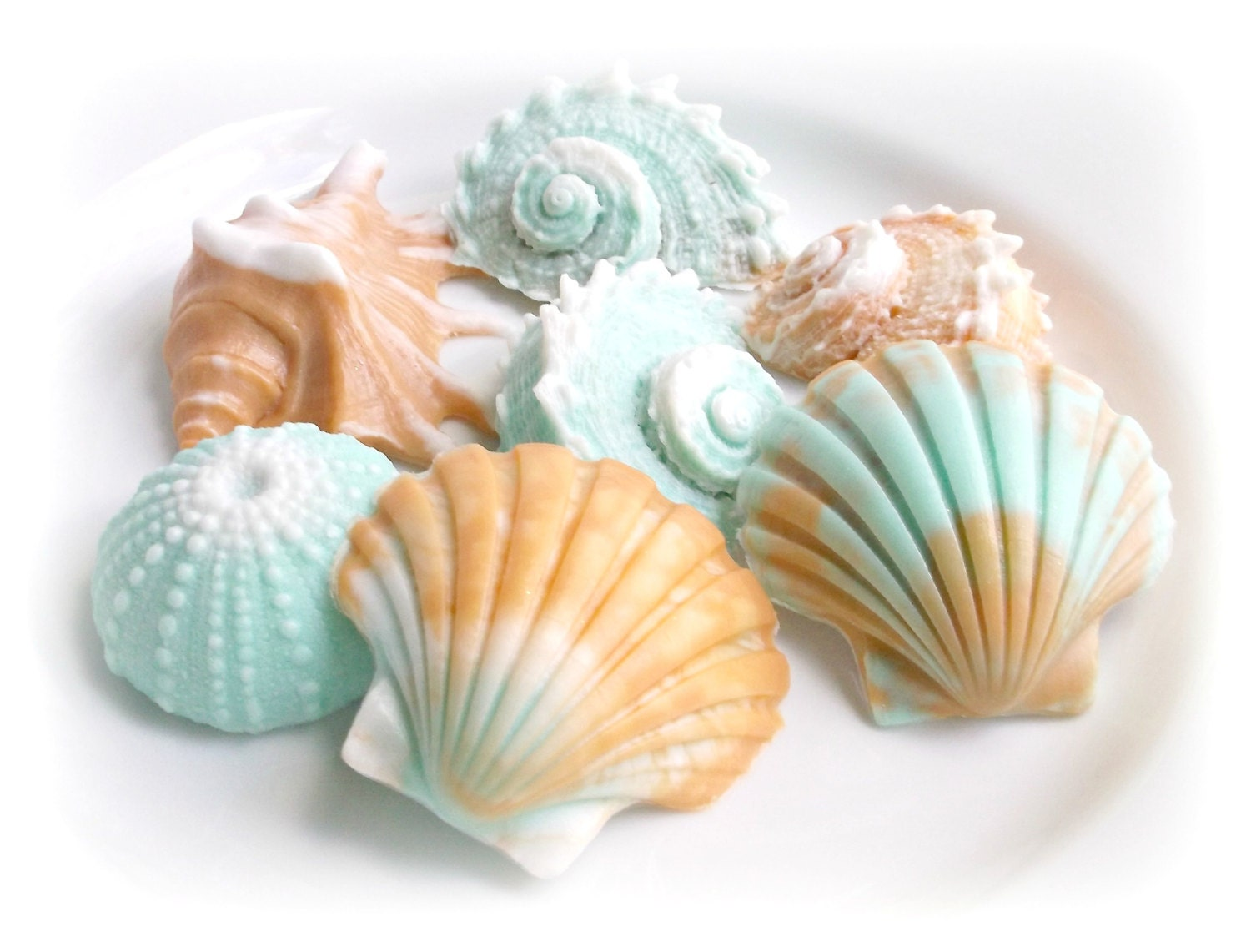 Decorative Soap Gift Sea Shell Soap Gift Set Beach House. Wall Units For Living Rooms. Chevron Office Decor. How To Become An Interior Decorator. Decorations For Party. Laser Cut Decorative Metal Panels. Custom Laundry Room. Waiting Room Decor. Living Room Furniture Layout Ideas