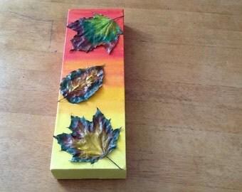 Leaf art on canvas