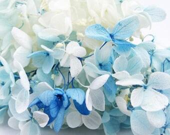 Preserved Fresh Flower,Immortalized Hydrangea Flowers,Double Color Gradient Small Leaf Anna Hydrangea Flowers ,Flower DIY