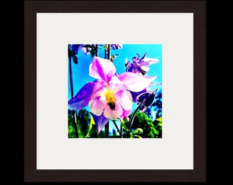 Photography Gallery frame