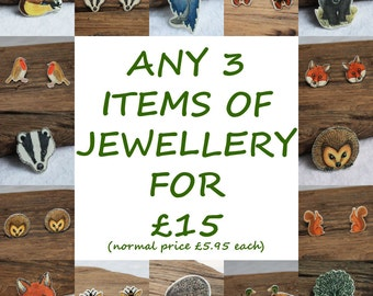 Mixed Selection Offer Any Three Stud Earrings or Brooches