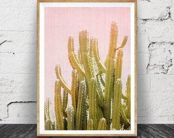 Cactus Wall Art Print, Desert Cactus Photo, South Western Decor, Cactus Print, Arizona Photography, Pink and Green Printable Art, Cactus Art