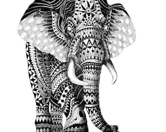 African Animal Prints