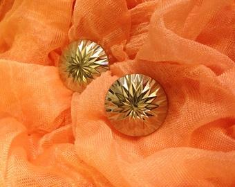 Sarah Coventry Clip Earrings