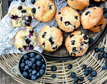 Blue-Berry-Mutt-Muffins