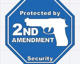 2nd amendment vinyl