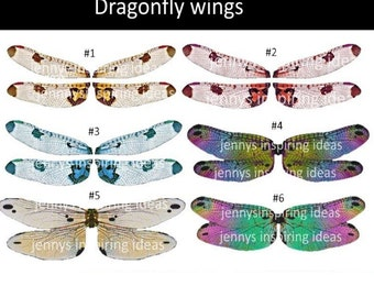 Dragonfly wings A4 transparency sheet
