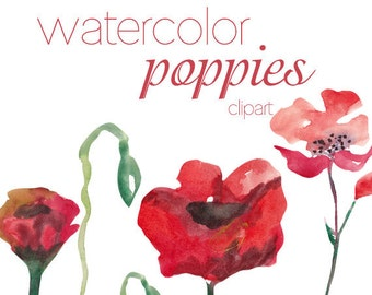 Watercolor Poppies Clipart Commercial Use