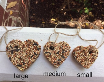 100 Small Birdseed Favors