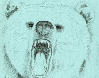 blue bear illustration