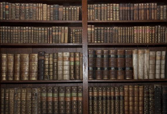 BookShelves Backdrop - old bookcase, vintage bookshelf, bookrack - Printed Fabric Photography Background G0355