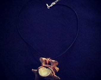 Sheep vertabrae necklace