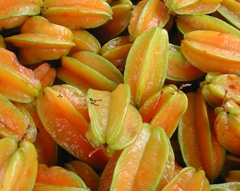 Market Fresh Starfruit - Original Photograph