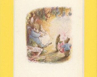Beatrix Potter Original Illustration Of Bunny Family