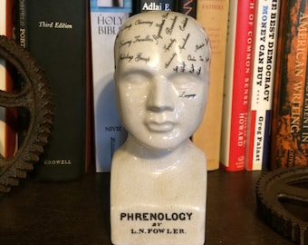 "6"" Phrenology Head"