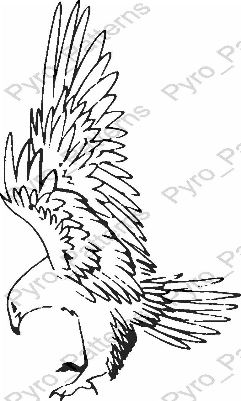 Eagle Bird Pyrography Wood burning Pattern Printable ...