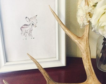 vintage deer drawing