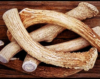 Premium Deer Antler Pieces- Dog Chews - By The Pound. Natural Shed Antlers