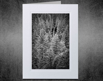 Photography Notecard, Waterfall, Forest, Photo Greeting Card, Photo Notecard, Black and White, Silver Falls State Park, Oregon, Infrared