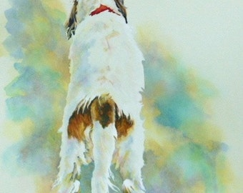 Pet Portraits & Animal Art. Commissions from your Favourite Photos