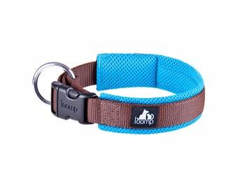 Sport padded dog collar
